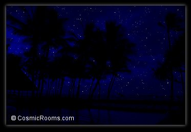 romance under the stars in a tropical paradise